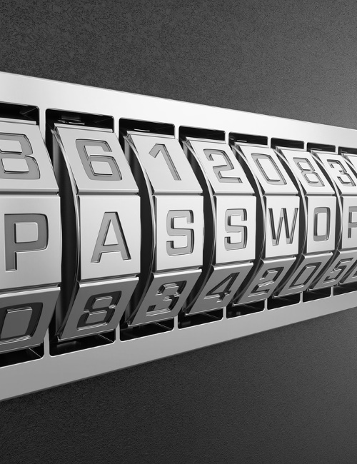 Caring for your Computer - Passwords